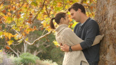 Autumn fall season romance young couple in love hug and cuddle under tree Footage