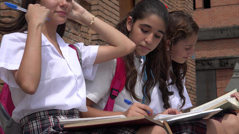 Teen Female Students Studying Live Action