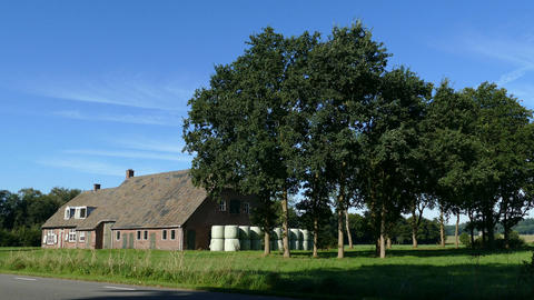 Farmhouse in Dutch landscape Footage