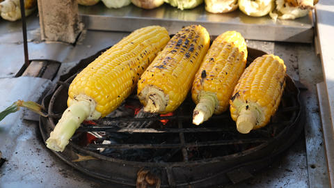 Raw corn is cooking on the grill Live Action