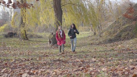 Joyful Middle Eastern boyfriend and Caucasian girlfriend strolling between trees Live Action