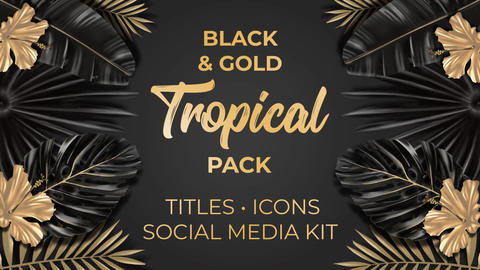 Black and Gold Tropical Pack After Effects Template