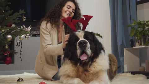 Close-up portrait of cheerful Caucasian girl and big dog resting indoors. Woman Live Action