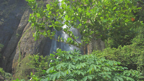 picturesque waterfall from high rocky cliff with green trees ライブ動画