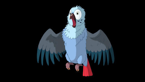 Blue Parrot Gets Angry. Classic Disney Style Animation with Alpha Channel Animation