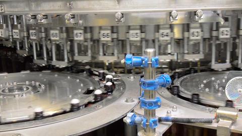 Beer fills bottles in the workshop Live Action