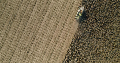 Combine harvester harvesting corn aerial drone shot agriculture Live Action
