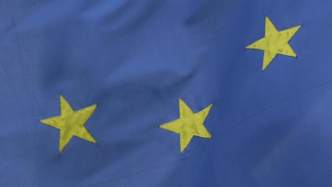 EU flag Live Action