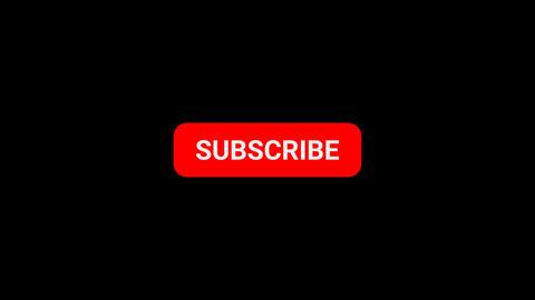 Subscribe 애니메이션