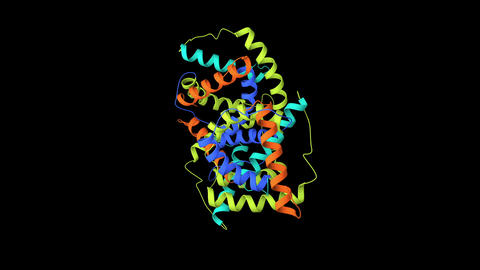 Rotating visualization of protein structure Animation