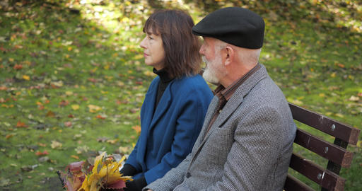 Family conversation of an elderly husband and wife on a bench in a cozy city Live Action