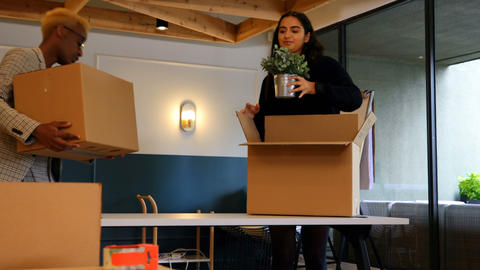 Young mixed race business colleagues unpacking cardboard boxes in modern office 4k Live Action