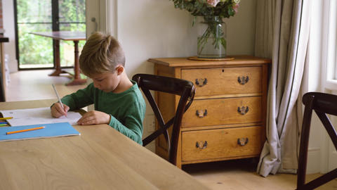 Cute boy doing homework at dining table in a comfortable home 4k Live Action
