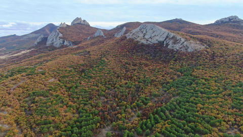 Smooth flight around the mountain range covered by forest Autumn Time overcast Live Action