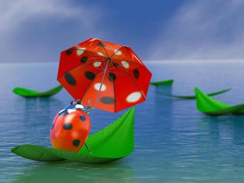 Ladybug with umbrella Photo