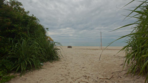 Camera Moves by Small Palms to Sand Beach with Volleyball Net Footage