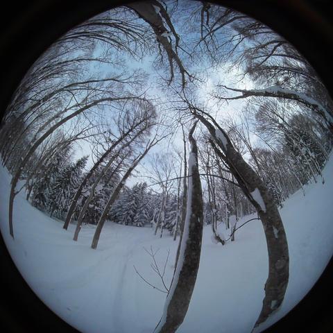 japow powder snow selfy Snow mountain forest landscape Rime landscape 1 Live Action