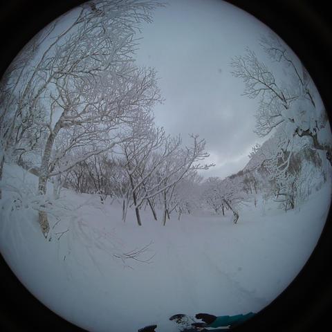 japow powder snow Snow mountain forest landscape Rime landscape 4 Live Action