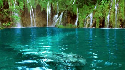 Waterfalls in Forest Lake. UHD. Seamless Loop Footage