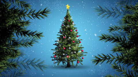 Christmas tree and branches and snow Animation