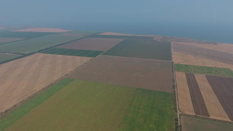 Aerial view on agricultural fields, Taman, Russia Footage