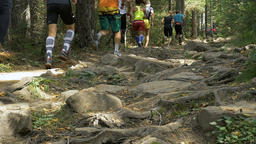 large group of athletes run one behind other on a mountain trail among rocks Footage