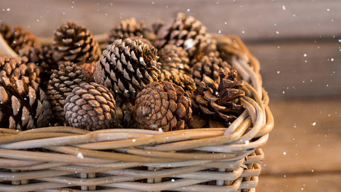 Falling snow with Christmas pine cones Animation