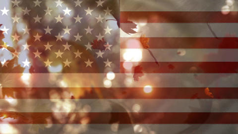 American flag and leaves fall Animation