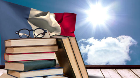 French Flag under the sunshine and blue sky Video Animation