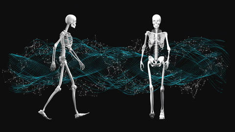 skeletons walking on the spot Animation