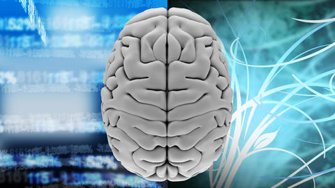 high angle view animation of a brain against data financial and light effects Animation