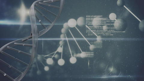 DNA helix with digital code Animation