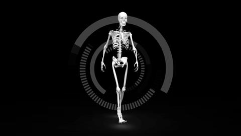 Digital skeleton walking against a dark background Animation