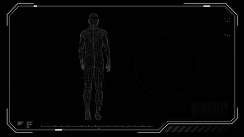 digitally generated human being analysed while walking away Animation
