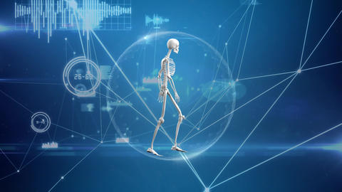 Digital composite of a human skeleton in a network bubble Animation
