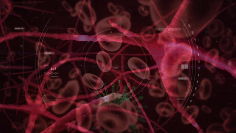 Digitally generated virus cells and red blood cells flowing through artery Animation