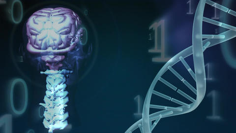 Digital composite of the genetic code of the brain Animation