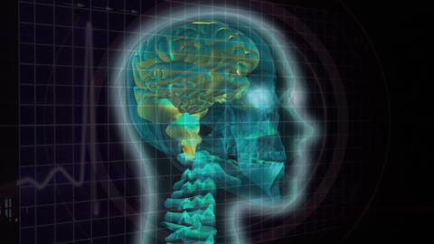 Digital composite of a human brain Animation
