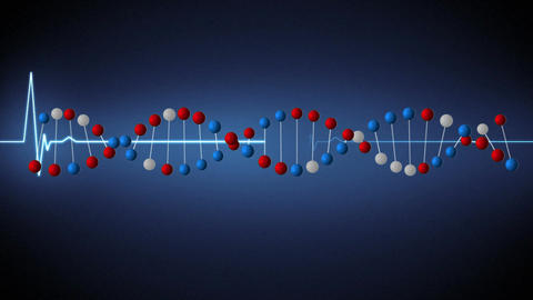 DNA double helix and heart rate Animation
