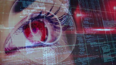 Female eye focused on data Animation