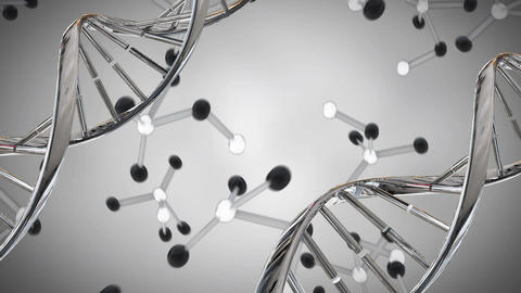 DNA double helix and molecule models Animation