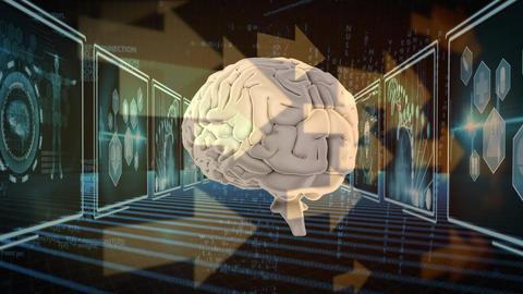 human brain and arrows Animation