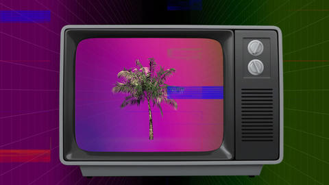 Retro television with palm tree on screen with sizzle Animation