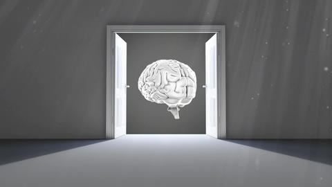 Opening doors to the brain Animation