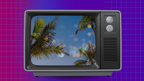 Small vintage TV where appear a paradise view Animation