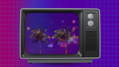 Front view of an old TV sizzling with palm trees on screen Animation