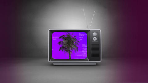 Old TV with palm tree on the screen against grey background Animation