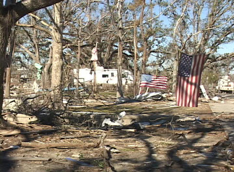 American flags hang from the trees of a devastated... Stock Video Footage