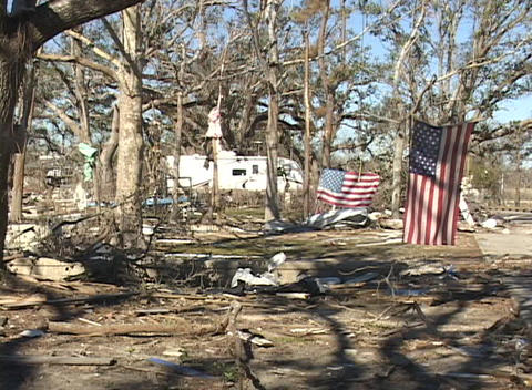American flags hang from the trees of a devastated neighborhood after Hurricane Katrina Footage