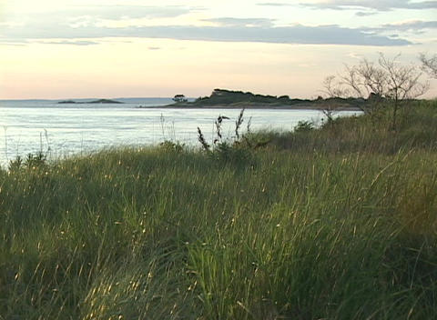 Medium shot of a grassy seashore Stock Video Footage